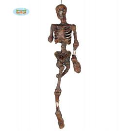 Skeleton 100cm D