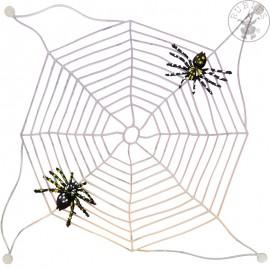 Pavouci se sítí D