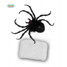 Pavouk s pavučinou D