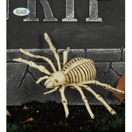 Kostra pavouka 24 cm